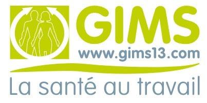 GIMS 13
