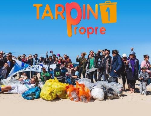 Opération inédite de ramassage de déchets sur Marseille